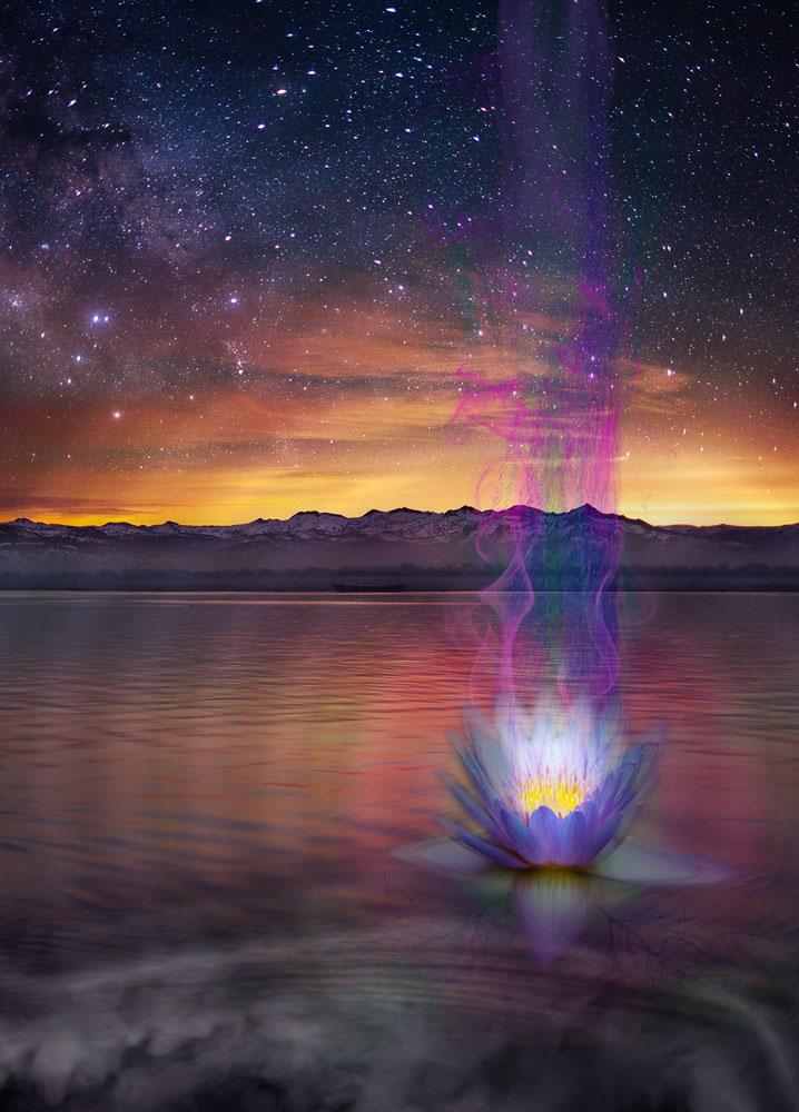 lotus flower glowing on water