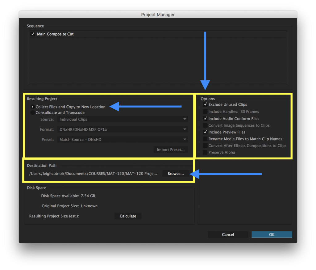 Premiere Pro: File, Project Manager, Collect Files